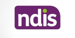 ndis official logo